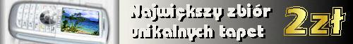 Tapety do kom�rki - NIGDZIE W INTERNECIE - 2z�!!